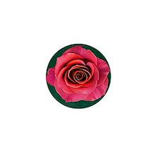 Fuschia Rose Mini Button