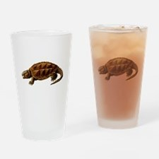 Prehistoric Turtle Drinking Glass