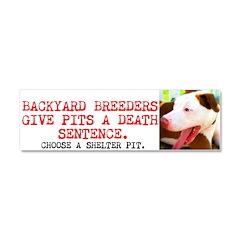 Backyard Breeders Give Pits a Death Sentence Car M