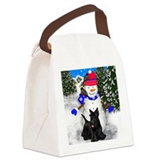24                                Canvas Lunch Bag