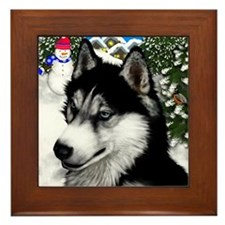 Siberian Husky copy                    Framed Tile