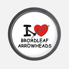 I love broadleaf arrowheads Wall Clock