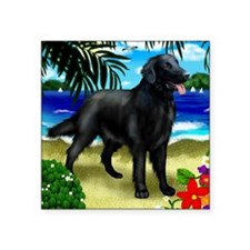 "flatcoatretriever2 copy Square Sticker 3"" x 3"""