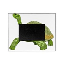 Galapagos Tortoise Picture Frame