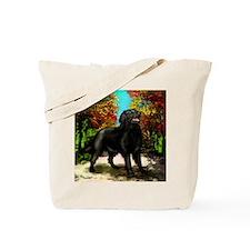 flatroad copy Tote Bag