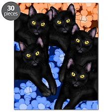 5blackcatslsc Puzzle