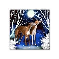 "American Whippet  snown cop Square Sticker 3"" x 3"""