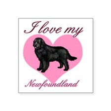 "Newfoundlandbl Square Sticker 3"" x 3"""