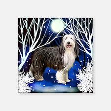 "beardedcollie snown copy Square Sticker 3"" x 3"""