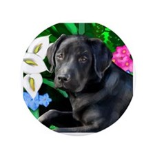 "labrador 4 3.5"" Button"
