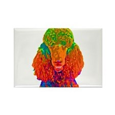 Psychadelic Poodle Rectangle Magnet