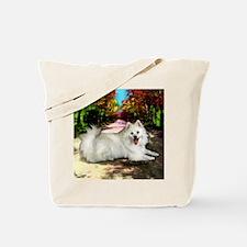 eskieroad copy Tote Bag