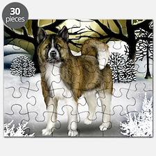 WS BA Puzzle