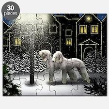 SC BT Puzzle