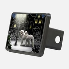 SC BT Hitch Cover