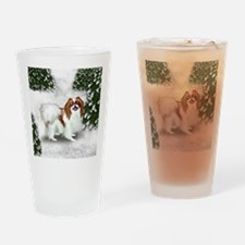 SF rjc Drinking Glass