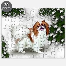 SF rjc Puzzle