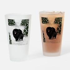 SF bpom Drinking Glass