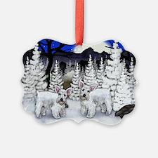Ws w Ornament