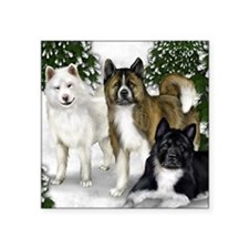 "SF AKITAS Square Sticker 3"" x 3"""