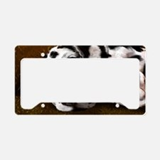DALMATION License Plate Holder