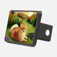 pomsunset Hitch Cover