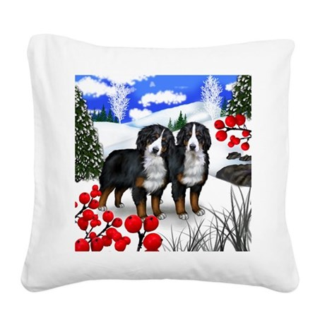 WB BMD Square Canvas Pillow
