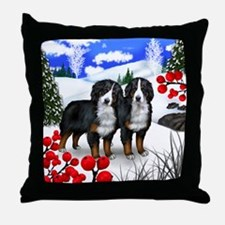 WB BMD Throw Pillow
