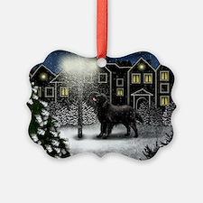 snowtown fcr Ornament