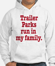 Funny I love parks Hoodie