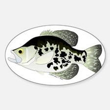 Black Crappie Sunfish CC Sticker (Oval)