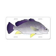Freshwater drum  t Aluminum License Plate