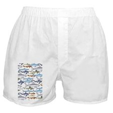 School of Sharks n Boxer Shorts