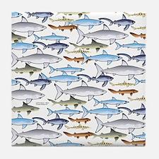 School of Sharks t Tile Coaster