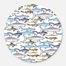 School of Sharks t Round Car Magnet