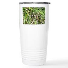 Dew on Grass 1 Travel Mug