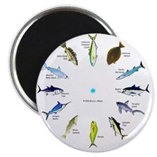 Southern California Sportfishing Clock Magnet
