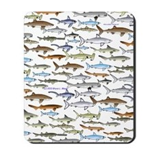 school of sharks 2V3 Mousepad