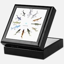 Shark Clock Two Keepsake Box