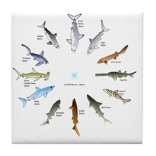Shark Clock Two Tile Coaster
