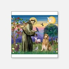 St Francis Golden Sticker