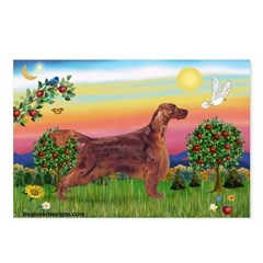 Irish Setter in Bright Countr Postcards (Package o