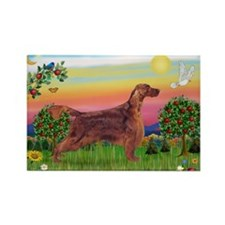 Irish Setter in Bright Countr Rectangle Magnet
