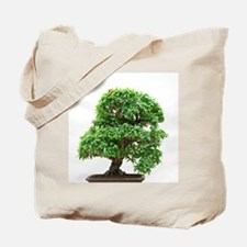 Punica Granatum bonsai Tote Bag