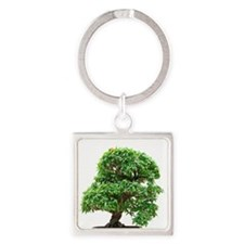 Punica Granatum bonsai Square Keychain