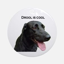 drool is cool Ornament (Round)