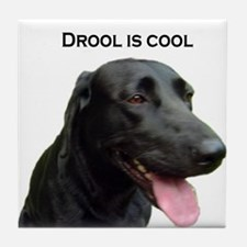 drool is cool Tile Coaster