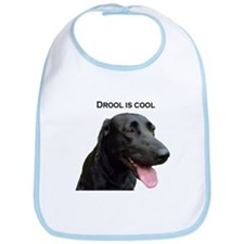 drool is cool Bib
