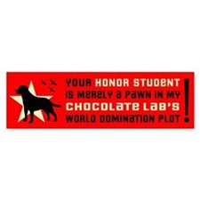 CHOCOLATE Lab Domination! Bumper Car Sticker
