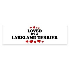 Loved: Lakeland Terrier Bumper Bumper Sticker